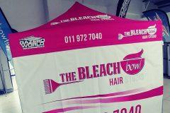 The-Bleach-1